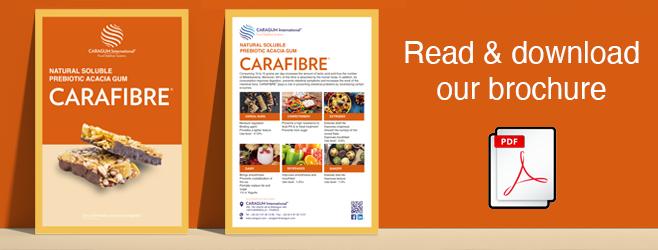 CARAFIBRE_brochure