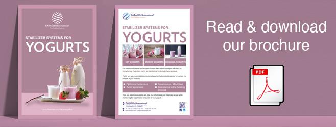 yogurts_brochure